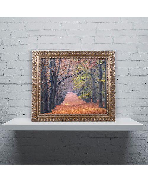 """Trademark Global Cora Niele 'Beech Lane' Ornate Framed Art, 11"""" x 14"""""""
