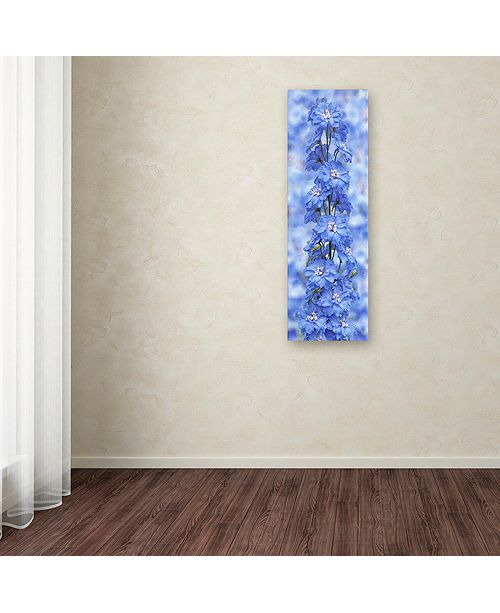 "Trademark Global Cora Niele 'Blue Larkspur' Canvas Art, 8"" x 24"""