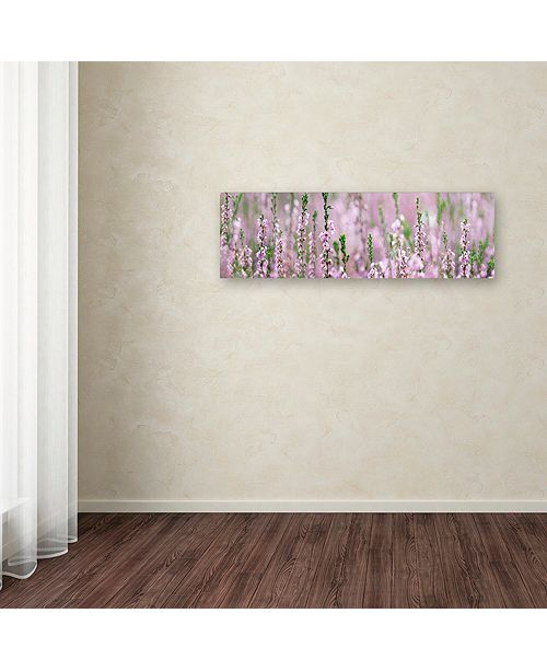 "Trademark Global Cora Niele 'Heather Scape' Canvas Art, 16"" x 47"""