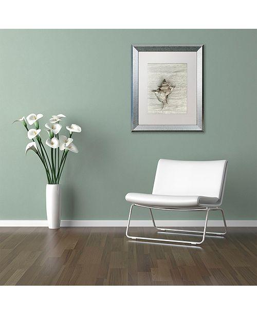 """Trademark Global Cora Niele 'Murex Shell' Matted Framed Art, 16"""" x 20"""""""