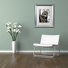 Jenny Newland 'Alluring Eyes' Matted Framed Art