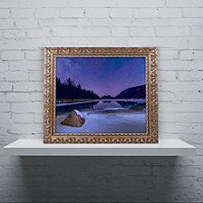 Michael Blanchette Photography 'Stars on Ice' Ornate Framed Art