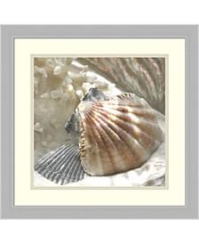Coral Shell III Framed Art Print