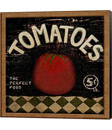 Tomatoes by Beth Albert Canvas Art