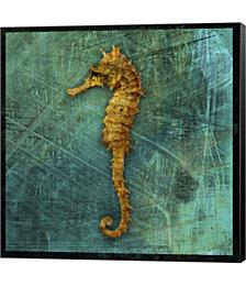 Seahorse by John W. Golden Canvas Art