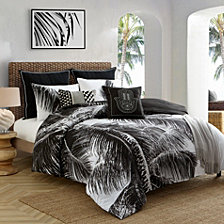 Caribbean Joe Palm 4-Piece Queen Comforter Set