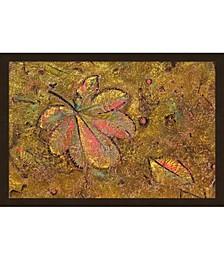 Leaf pattern in wall by Adam Jones / Danita Delimont Framed Art