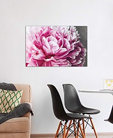 "iCanvas ""Peony Blush"" by 5by5collective Gallery-Wrapped Canvas Print (26 x 40 x 0.75)"
