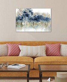 "iCanvas ""Water's Edge I"" by Carol Robinson Gallery-Wrapped Canvas Print (26 x 40 x 0.75)"