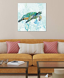 "iCanvas ""Sea Turtle Swim I"" by Carol Robinson Gallery-Wrapped Canvas Print (18 x 18 x 0.75)"