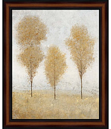 Autumn Springs II by Timothy O'Toole Framed Art