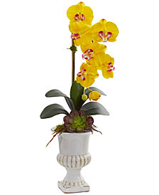 Nearly Natural Phalaenopsis Orchid & Succulent Artificial Arrangement in Urn