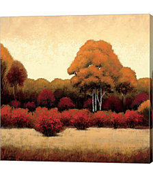 Autumn Forest I by James Wiens Canvas Art