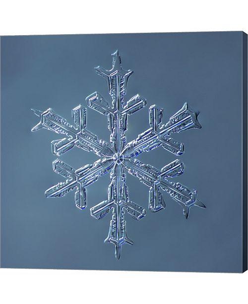 Metaverse Stellar Dendrite Snowflake 001.2.16.2014 by Print Collection Canvas Art
