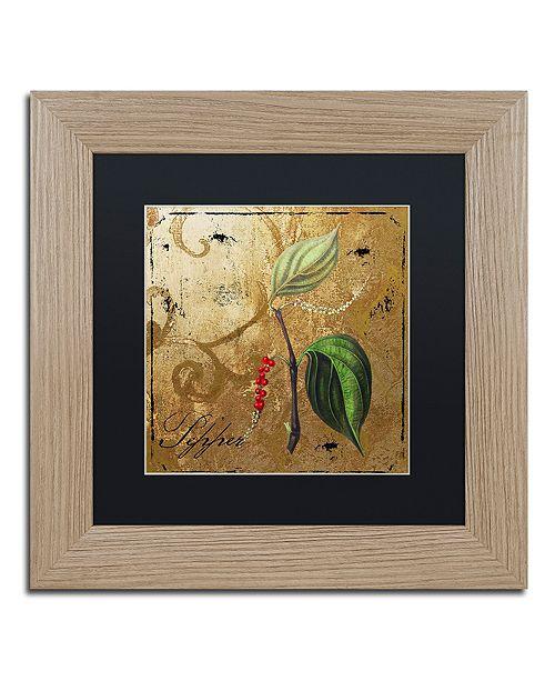 "Trademark Global Color Bakery 'Black Gold Herbs Iii' Matted Framed Art, 11"" x 11"""