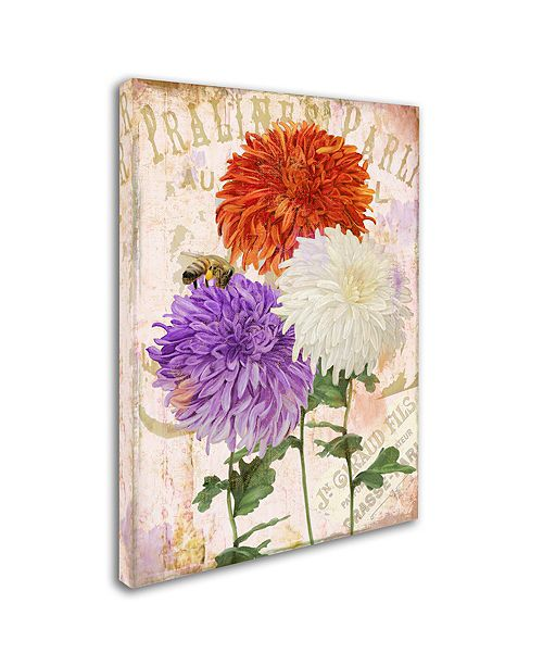 "Trademark Global Color Bakery 'Chrysanthemums' Canvas Art, 14"" x 19"""