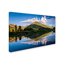 Michael Blanchette Photography 'Wings' Canvas Art