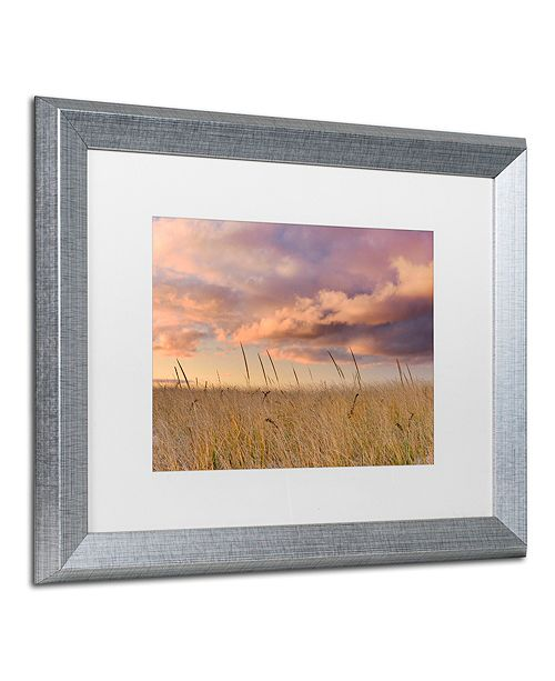 "Trademark Global Michael Blanchette Photography 'Beachgrass Sunrise' Matted Framed Art, 16"" x 20"""