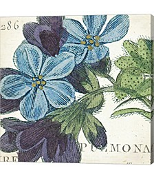 Blue Floral by Wild Apple Portfolio