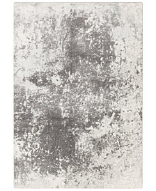 "Surya Aberdine ABE-8013 Medium Gray 9'3"" x 12'3"" Area Rug"