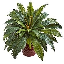 Marginatum Artificial Plant in Red Planter