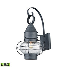 Onion 1 Outdoor Sconce Aged Zinc