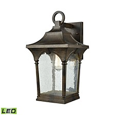 Loringdale 1 Light Outdoor Wall Sconce in Hazelnut Bronze with Clear Seedy Glass