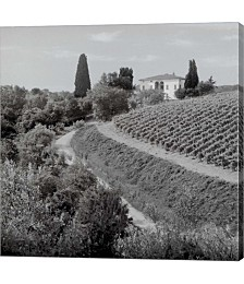 Tuscany V by Alan Blaustein