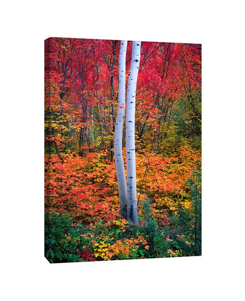 PTM Images 1 Decorative Canvas Wall Art