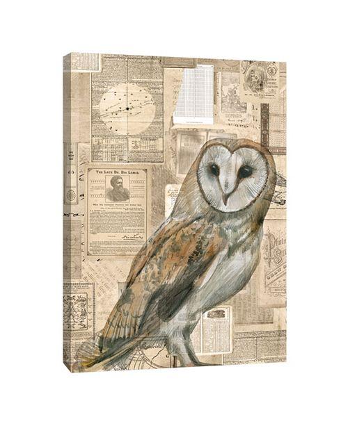 PTM Images Owl Illustration Decorative Canvas Wall Art