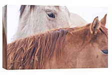 Horse Decorative Canvas Wall Art