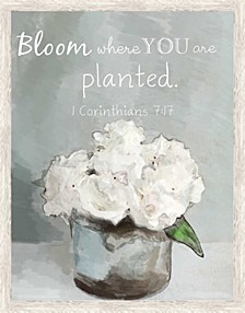 Living 31Bloom Where you are Planted I Decorartive Wall Art