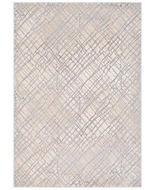 Surya Tibetan TBT-2314 Medium Gray 2' x 3' Area Rug