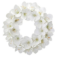 "Nearly Natural 24"" Amaryllis Artificial Wreath"