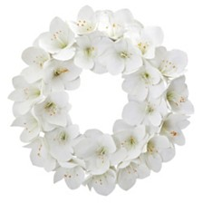 """Nearly Natural 24"""" Amaryllis Artificial Wreath"""
