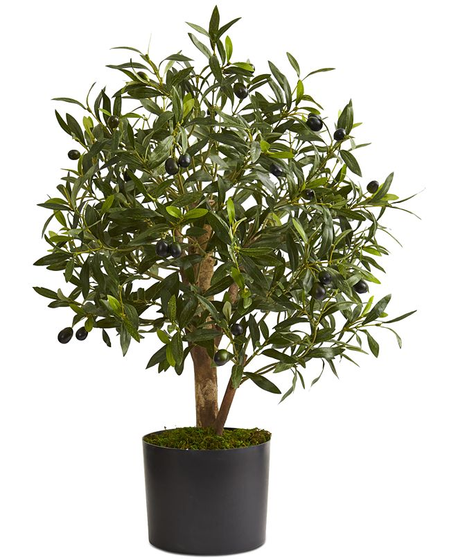 """Nearly Natural 29"""" Olive Artificial Tree"""