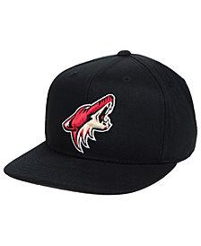 Outerstuff Boys' Arizona Coyotes Constant Snapback Cap