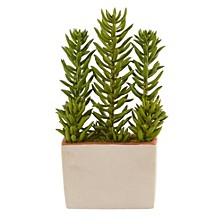"""17"""" Succulent Artificial Plant w/ Decorative Planter"""
