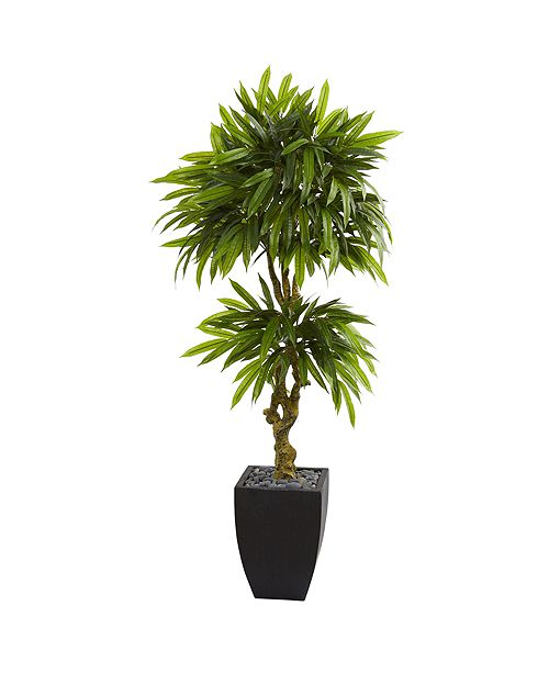 Nearly Natural 5.5' Mango Artificial Tree in Black Wash Planter UV Resistant