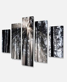 "Designart Sunbeams Through Black White Forest Forest Canvas Wall Art Print - 60"" X 32"" - 5 Panels"