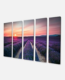 "Designart Endless Rows Of Lavender Flowers Modern Landscape Wall Art Canvas - 60"" X 28"" - 5 Panels"