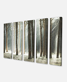 """Designart Maritime Pine Tree Forest With Rays Oversized Forest Canvas Art - 60"""" X 28"""" - 5 Panels"""