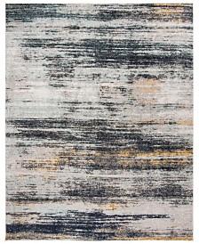 Safavieh Adirondack Light Gray and Black 6' x 9' Area Rug