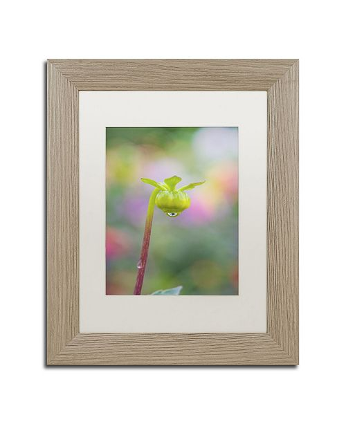 "Trademark Global Cora Niele 'Dahlia Bud' Matted Framed Art - 14"" x 11"" x 0.5"""