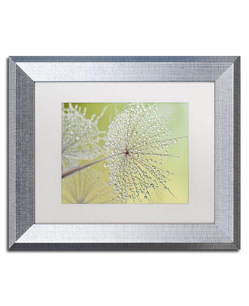 "Trademark Global Cora Niele 'Dewy Dandelion' Matted Framed Art - 14"" x 11"" x 0.5"""