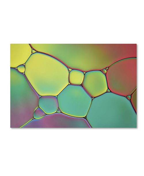"""Trademark Global Cora Niele 'Stained Glass I' Canvas Art - 19"""" x 12"""" x 2"""""""