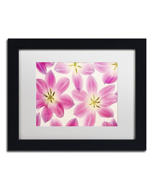 "Trademark Global Cora Niele 'Cerise Pink Tulips' Matted Framed Art - 11"" x 14"" x 0.5"""