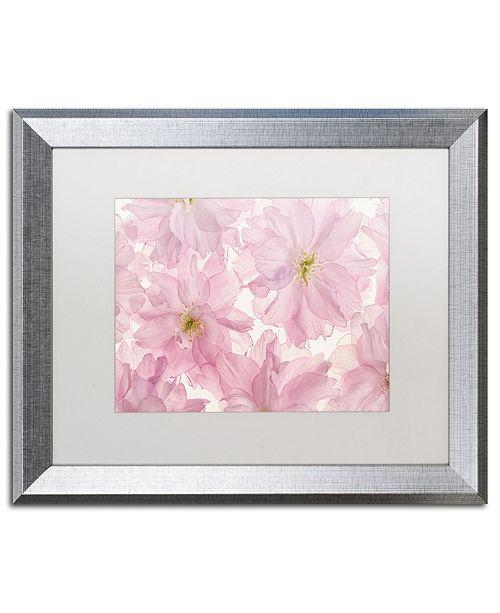 "Trademark Global Cora Niele 'Pink Cherry Blossom' Matted Framed Art - 20"" x 16"" x 0.5"""