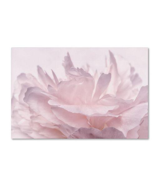 "Trademark Global Cora Niele 'Pink Peony Petals III' Canvas Art - 24"" x 16"" x 2"""