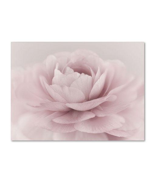 "Trademark Global Cora Niele 'Stylisch Rose Pink' Canvas Art - 19"" x 14"" x 2"""